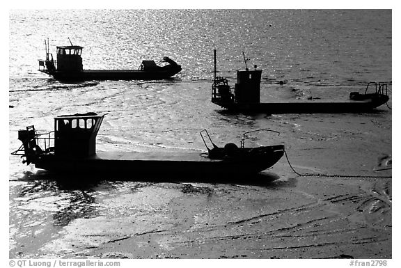 Flat-bottom fishing boats at low tide, Cancale. Brittany, France (black and white)