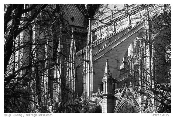 Notre Dame Cathedral buttress detail. Paris, France (black and white)