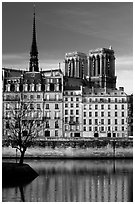 Saint-Louis island and Notre Dame. Paris, France ( black and white)