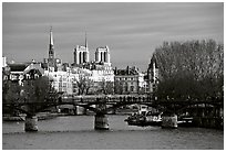 Pont des Arts and ile de la Cite, late afternoon. Paris, France ( black and white)
