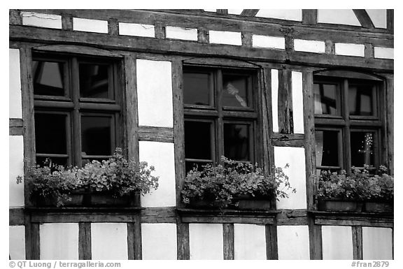 Detail of half-timbered house. Strasbourg, Alsace, France (black and white)