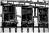 Detail of half-timbered house. Strasbourg, Alsace, France ( black and white)
