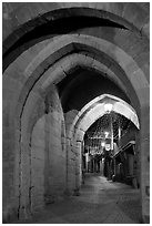 Rue Cros Mayerevielle through medieval Porte Narbornaise. Carcassonne, France (black and white)