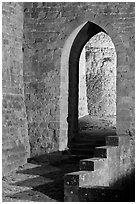 Stone gate. Carcassonne, France ( black and white)