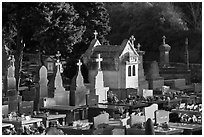 Cemetery. Carcassonne, France (black and white)