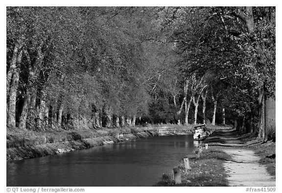 Tree-lined footpath along Canal du Midi. Carcassonne, France (black and white)