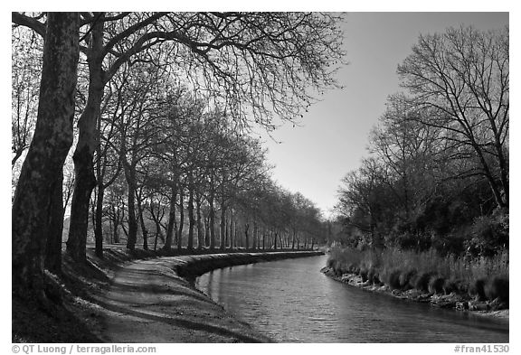 Rural section of Canal du Midi. Carcassonne, France (black and white)