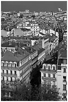 Aerial view of city heart. Lyon, France ( black and white)
