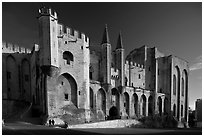Palace of the Popes. Avignon, Provence, France (black and white)