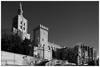 Cathedral of Notre-Dame-des-Doms and Palace of the Popes. Avignon, Provence, France (black and white)