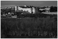 Ramparts across bare trees. Avignon, Provence, France ( black and white)