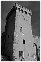 Medieval tower. Avignon, Provence, France (black and white)