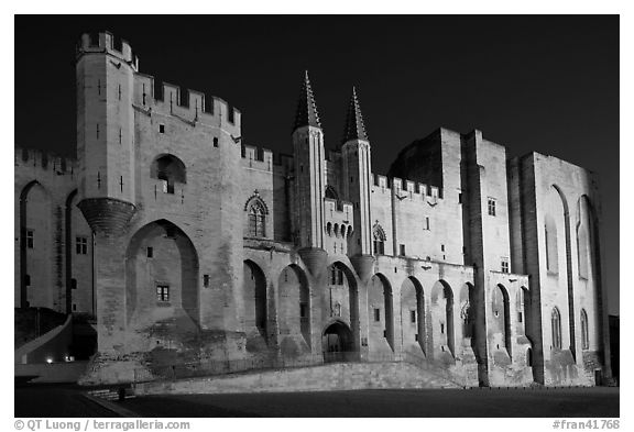 Gothic facade of Papal Palace at night. Avignon, Provence, France (black and white)