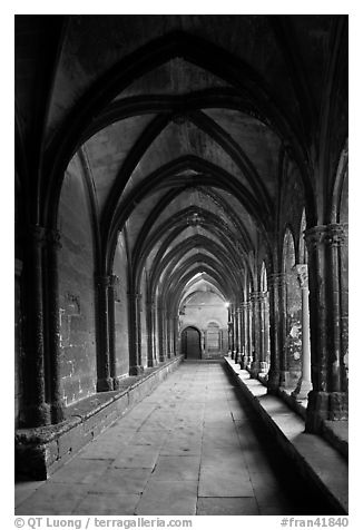 Gothic gallery, St Trophimus cloister. Arles, Provence, France (black and white)