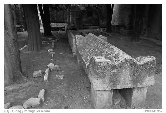 Sarcophagus, Alyscamps. Arles, Provence, France (black and white)