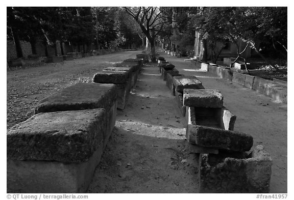 Rows of tombs on Alyscamps ancient burial grounds. Arles, Provence, France (black and white)