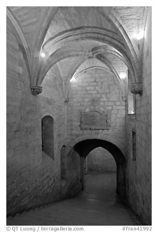 Staircase, Palais des Papes. Avignon, Provence, France (black and white)