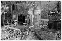 Salon Francois 1er, Fontainebleau Palace. France (black and white)