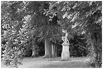 Sculpture, Horse chestnut trees (Aesculus hippocastanum), Chateau de Fontainebleau. France (black and white)