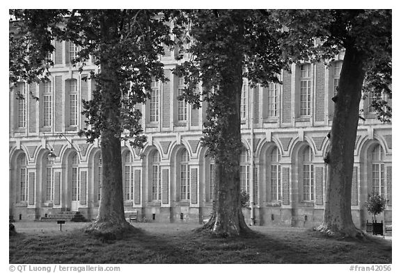 Trees and facade, Fontainebleau Palace. France (black and white)