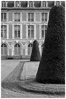 Hedged trees and facade, Palace of Fontainebleau. France (black and white)