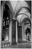 Transept, Cathedrale Notre-Dame de Chartres. France ( black and white)