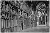 Sanctuary, Cathedrale Notre-Dame de Chartres. France ( black and white)