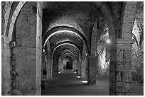 Vaulted lower room, Provins. France (black and white)