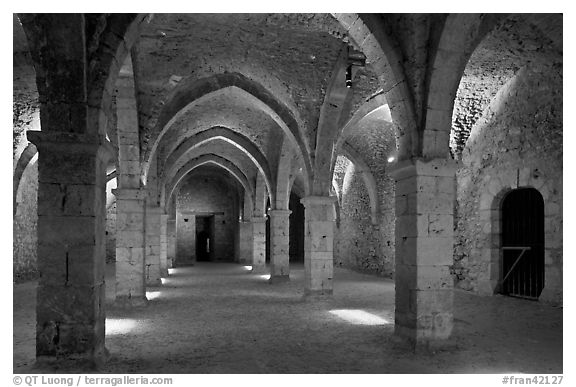 Underground gallery, Provins. France (black and white)