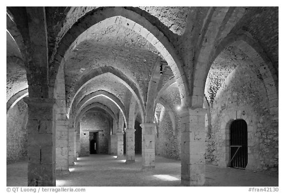 Vaulted room illuminated with colored lights, Provins. France (black and white)