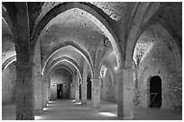 Vaulted room illuminated with colored lights, Provins. France ( black and white)