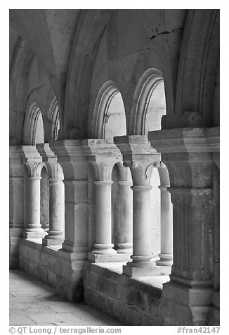 Detail of columns, the cloister, Fontenay Abbey. Burgundy, France (black and white)