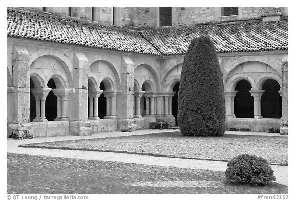 Cloister courtyard with dusting of snow Abbaye de Fontenay. Burgundy, France (black and white)