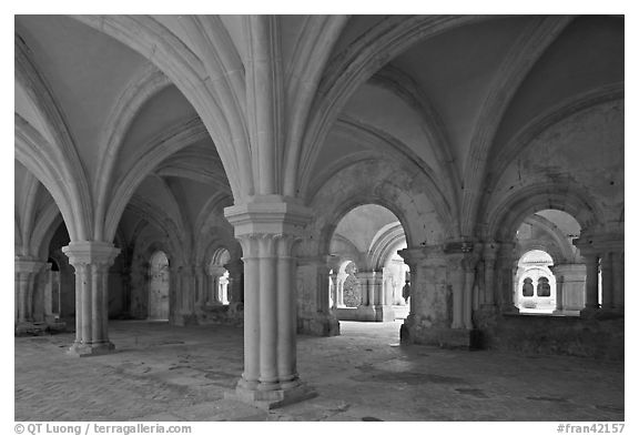 Rib-vaulted council room, Abbaye de Fontenay. Burgundy, France (black and white)