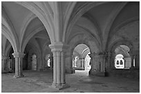 Rib-vaulted council room, Abbaye de Fontenay. Burgundy, France ( black and white)