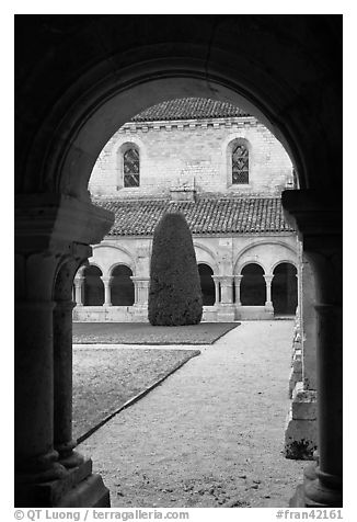 Garden seen from cloister, Abbaye de Fontenay. Burgundy, France (black and white)