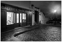 Gallery, street light, and coblestone pavement, Montmartre. Paris, France ( black and white)