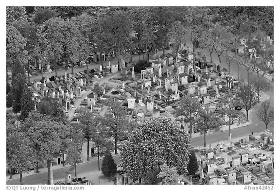 Montparnasse Cemetery from above. Paris, France (black and white)