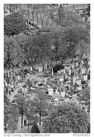Aerial view of Montparnasse Cemetery. Paris, France (black and white)
