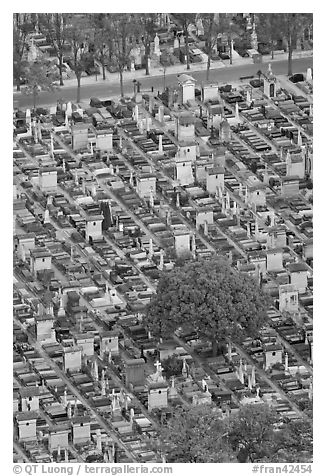 Tombs in Cimetierre du Montparnasse seen from above. Paris, France (black and white)