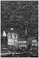 Aerial view of Notre-Dame de Paris Cathedral at night. Paris, France ( black and white)