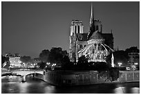 Ile de la Cite and Notre Dame de Paris rear by night. Paris, France ( black and white)
