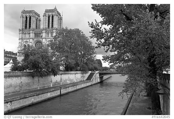 Seine and Notre-Dame facade in the spring. Paris, France (black and white)