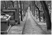 Alley and tombs in winter, Pere Lachaise cemetery. Paris, France (black and white)