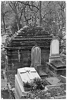 Mossy tombs, Pere Lachaise cemetery. Paris, France (black and white)