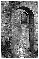 Gates inside the Sisteon Citadel. France ( black and white)