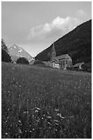 Meadow, Villar d'Arene village, ridge, sunset. France (black and white)