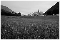 Meadow, Villar d'Arene village,  sunset. France (black and white)