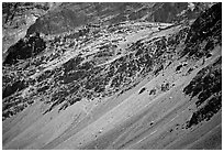 Rocky slopes topped by village and gompa, Zanskar, Jammu and Kashmir. India (black and white)