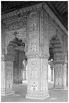 Decorated columns, Hammans, Red Fort. New Delhi, India ( black and white)